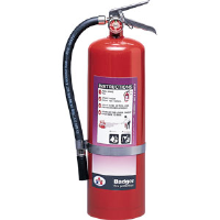 Badger 23778 10 lb BC Purple K Extinguisher w/Wall Hook