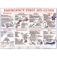 Brady 45854 First Aid Training Poster