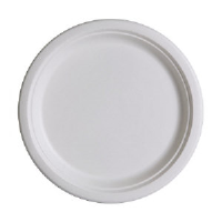 Eco Products EP-P005 10 Inch Sugarcane Bagasse Plates, 500/Case
