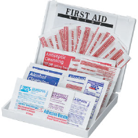 First Aid Only FAO-112 33-Piece All-Purpose Kit, Plastic Case